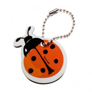 Cute Tag with Ladybird
